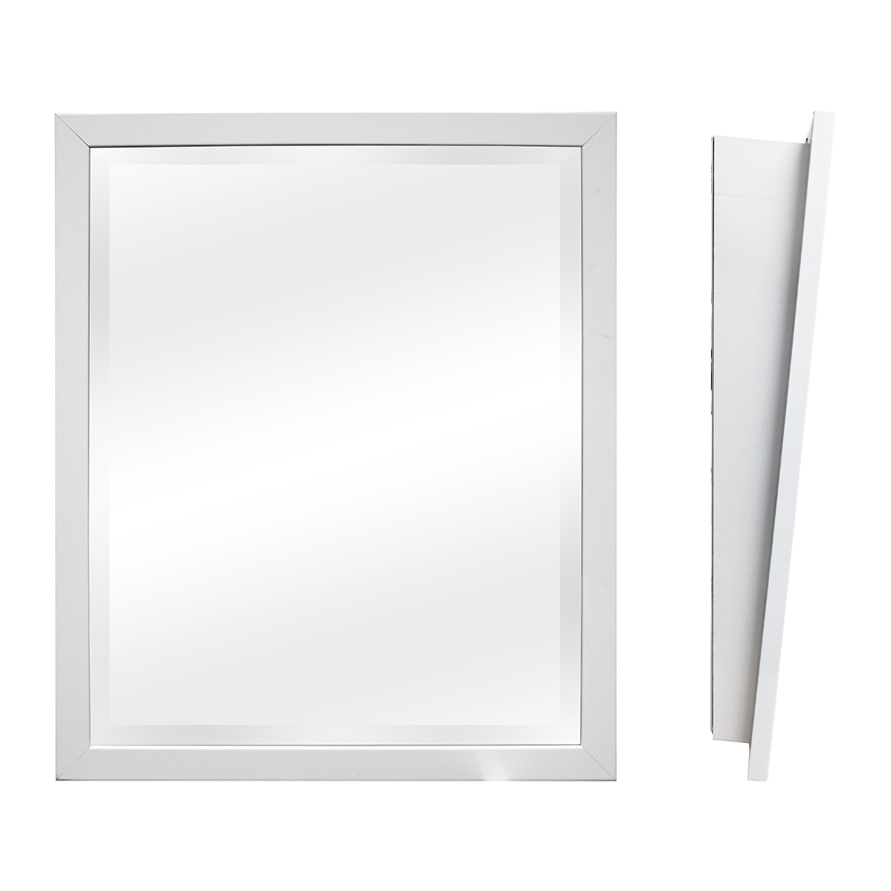 White ADA mirror-02.jpg
