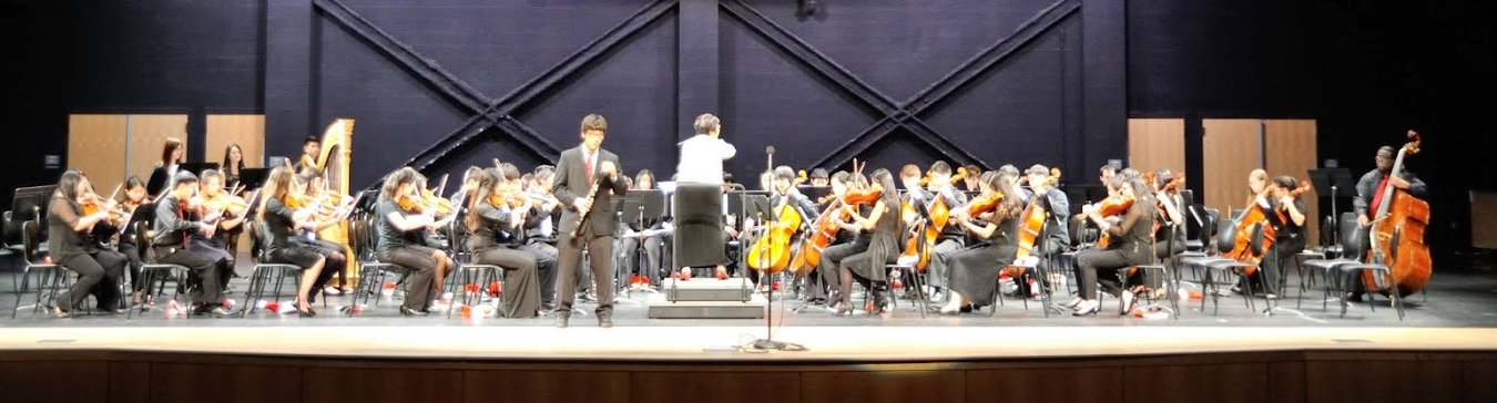 Ms. Lin conducting the Sinfonia