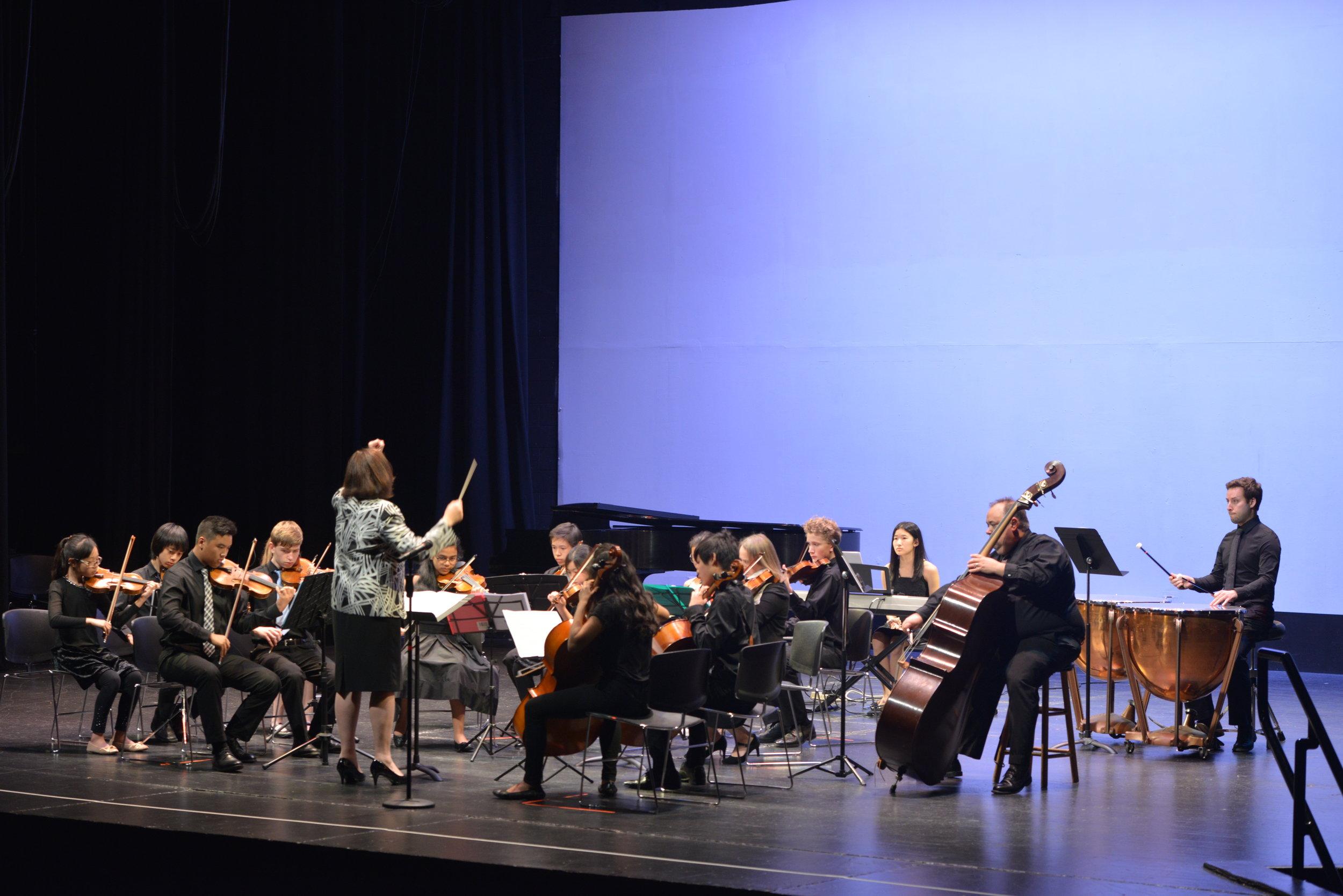 Strings Ensemble - 4.JPG