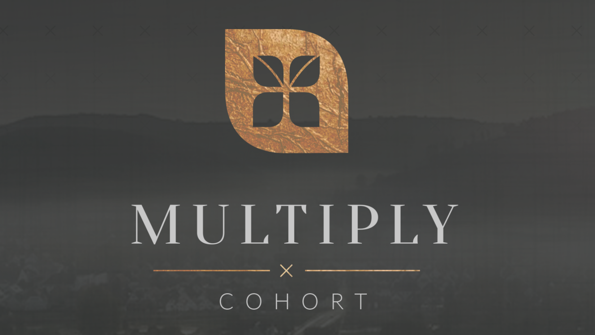 Multiply Cohort