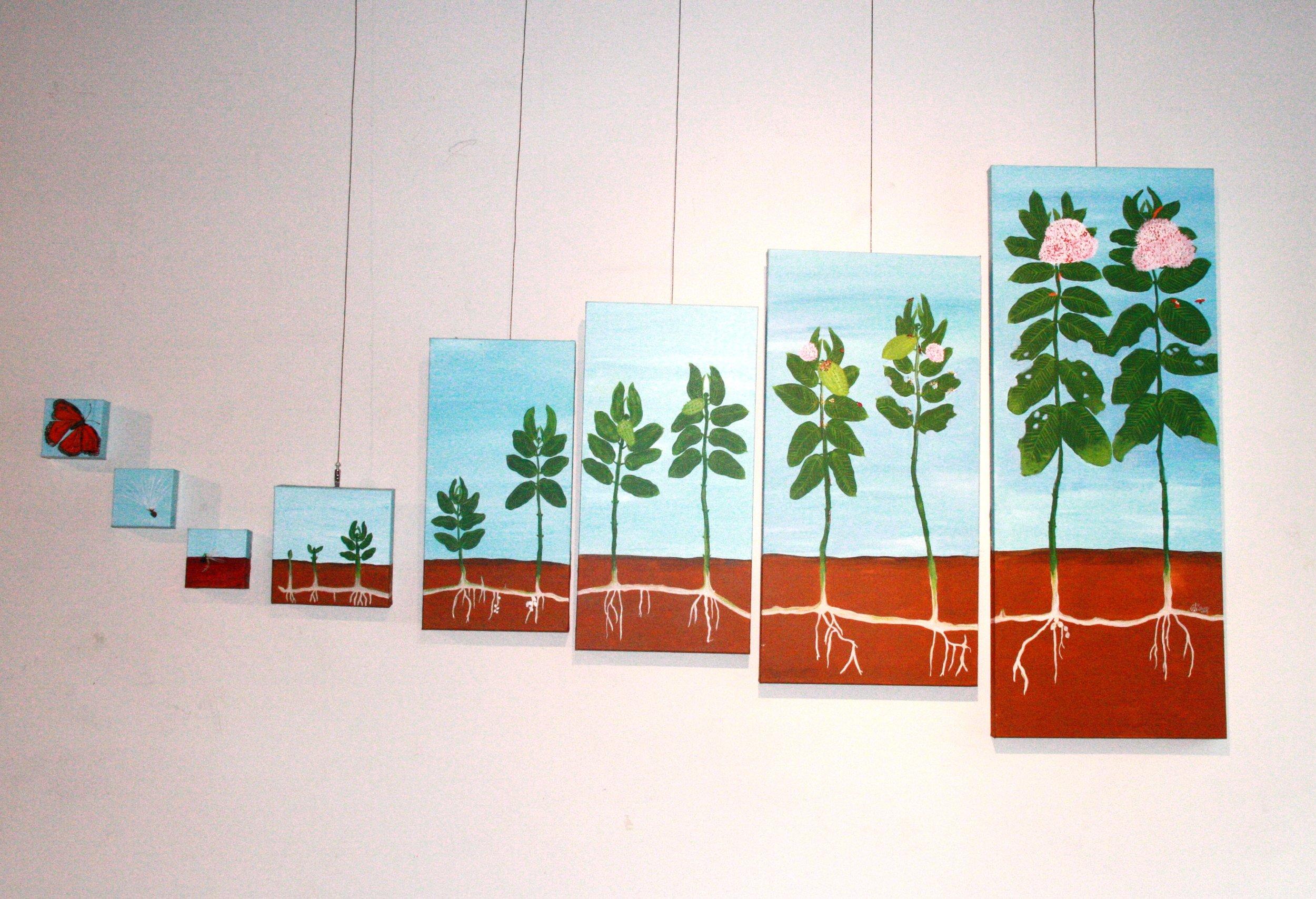 exhibit pic 4.jpg