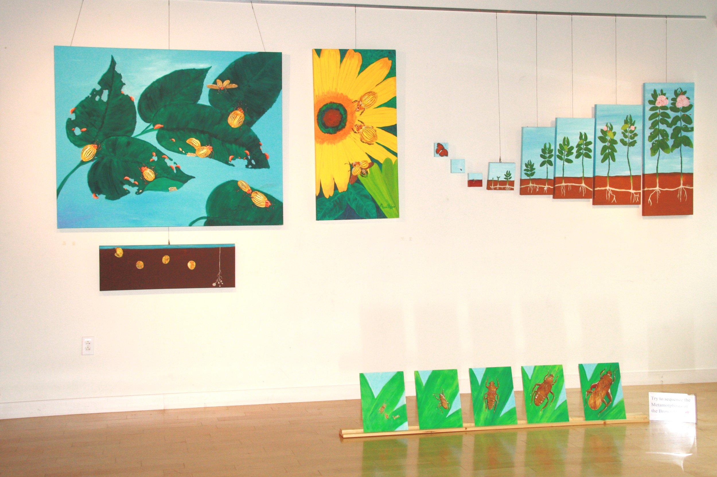 exhibit pic 7.jpg
