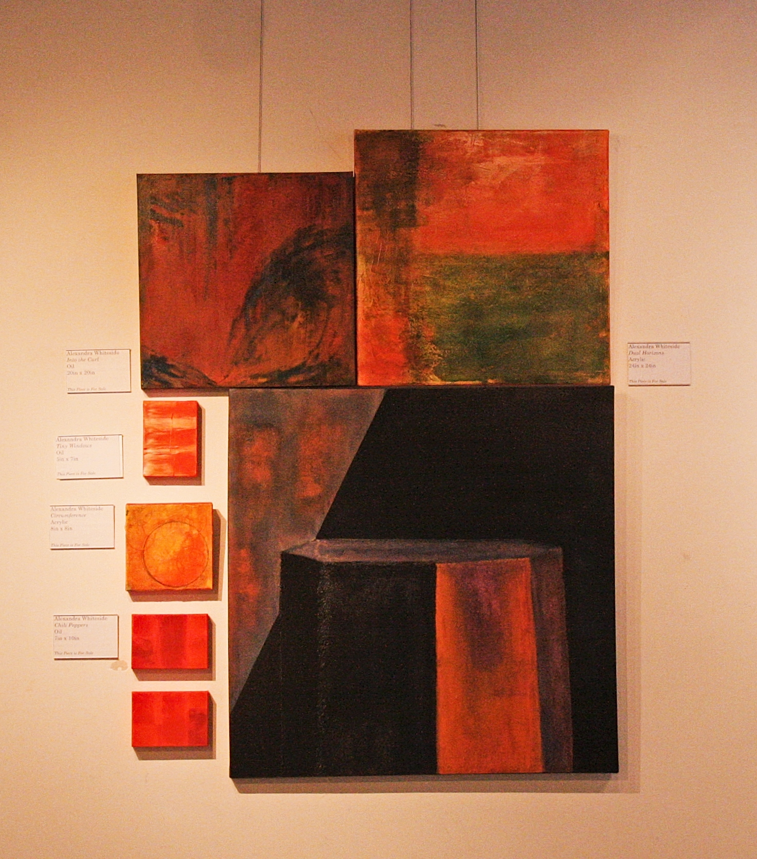 Alex Whitside abstracts in situ 2.jpg