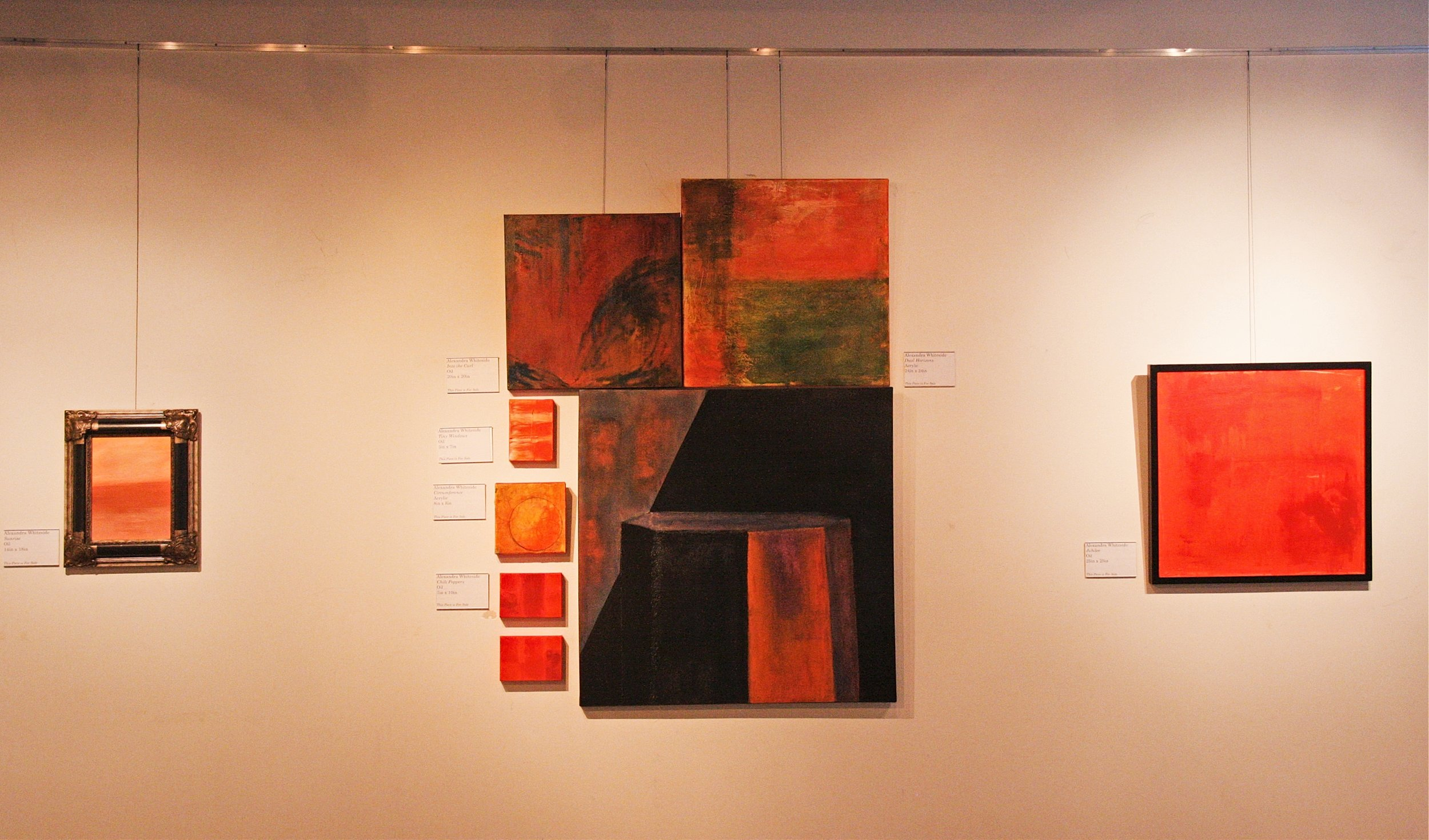 Alex Whitside abstracts in situ.jpg