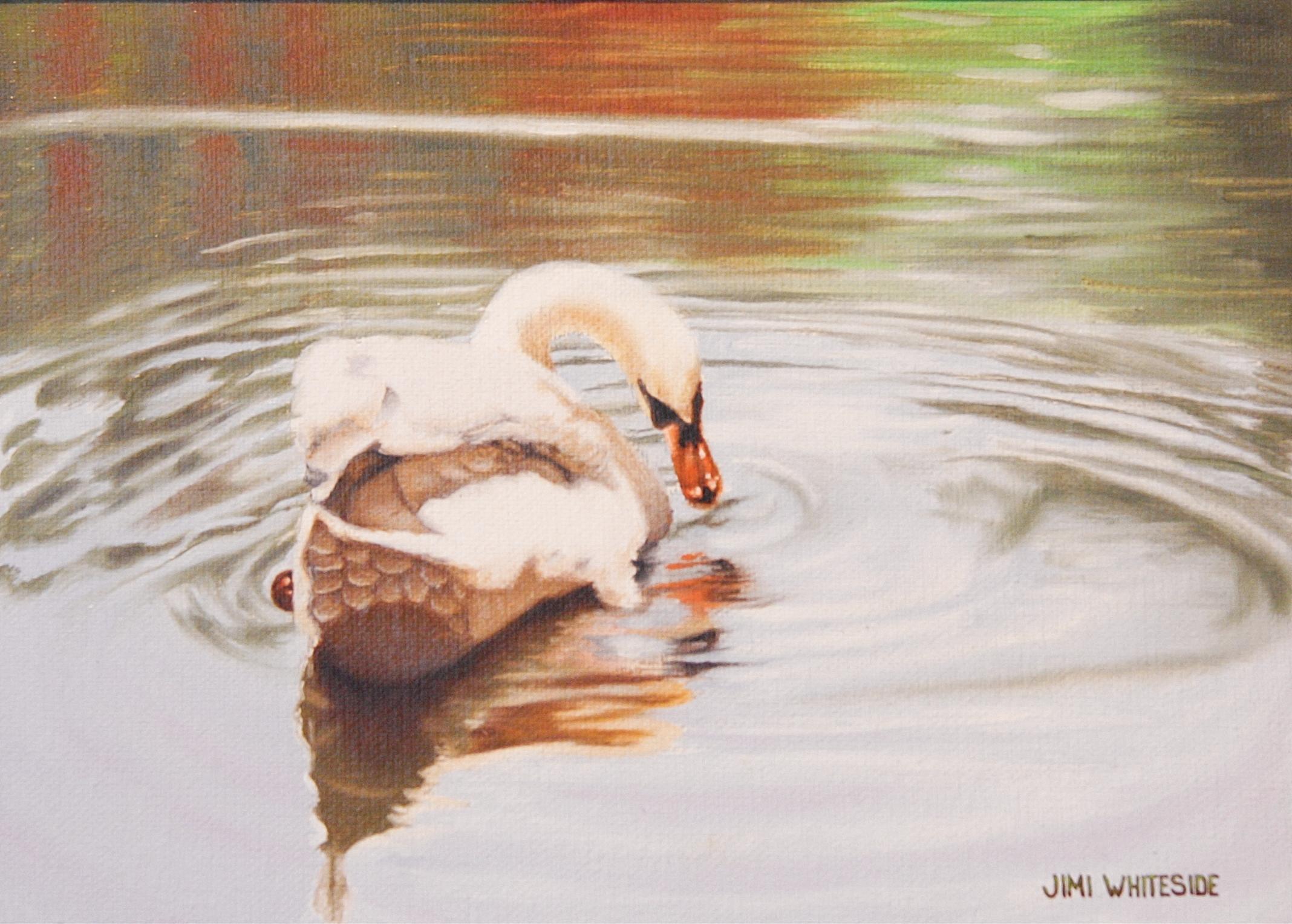 Jimi W. Summer Swan.jpg