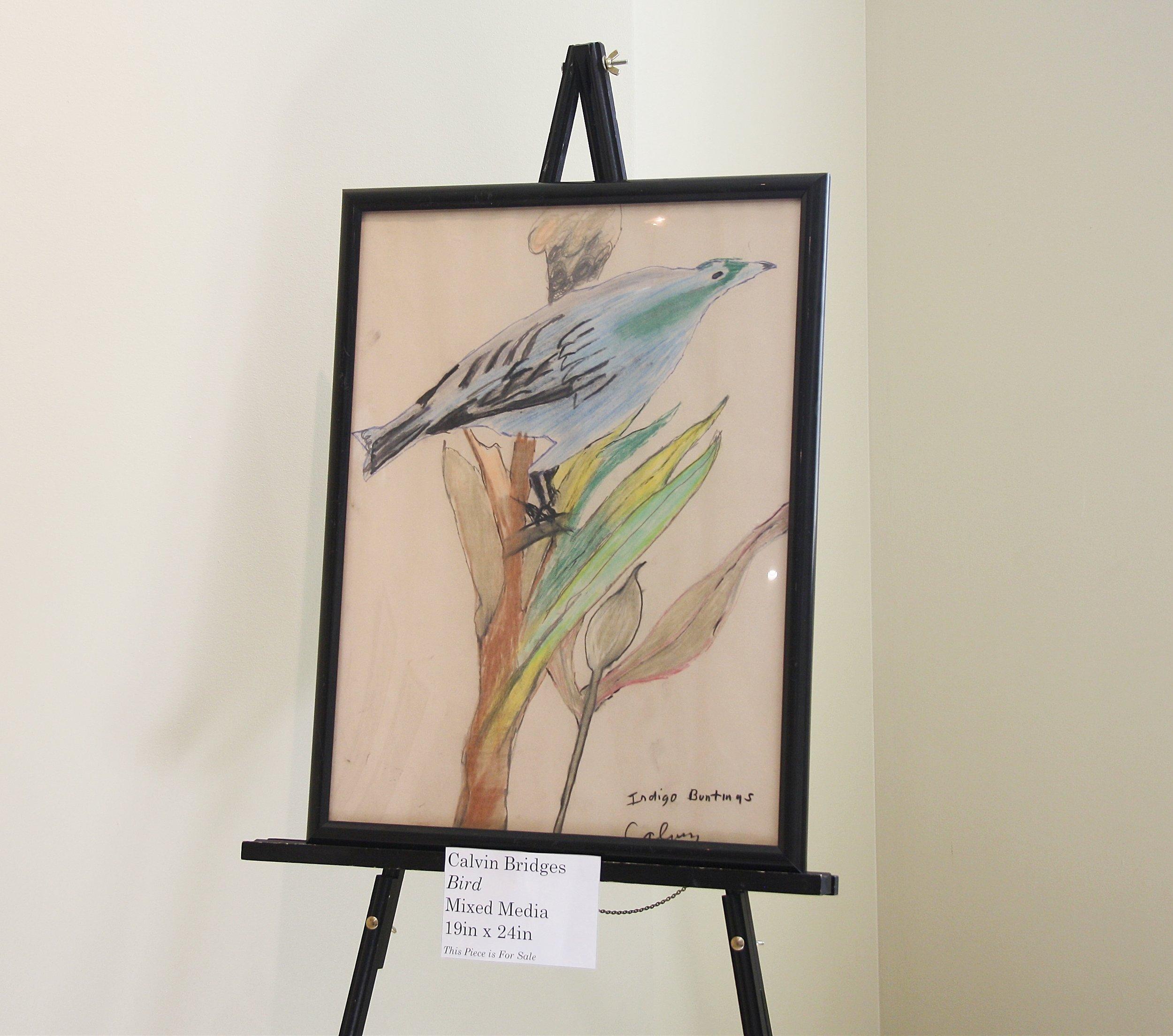 Calvin Bridges bird.jpg