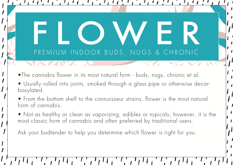 Beginner's Guide to Flower