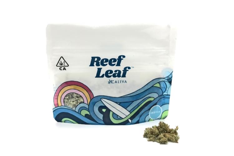 Reef_Leaf_Loose-edit.jpg
