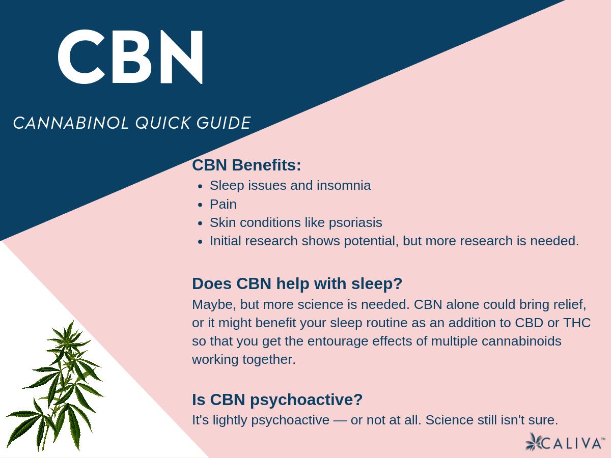 CBN cannabinol a cannabis cannabinoid infographic Caliva
