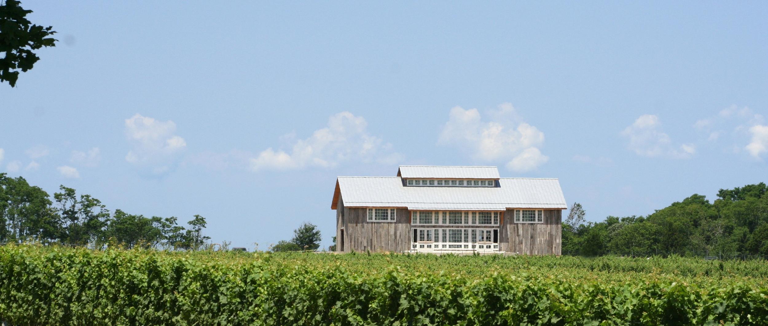 Kontokosta-wineryC.jpg
