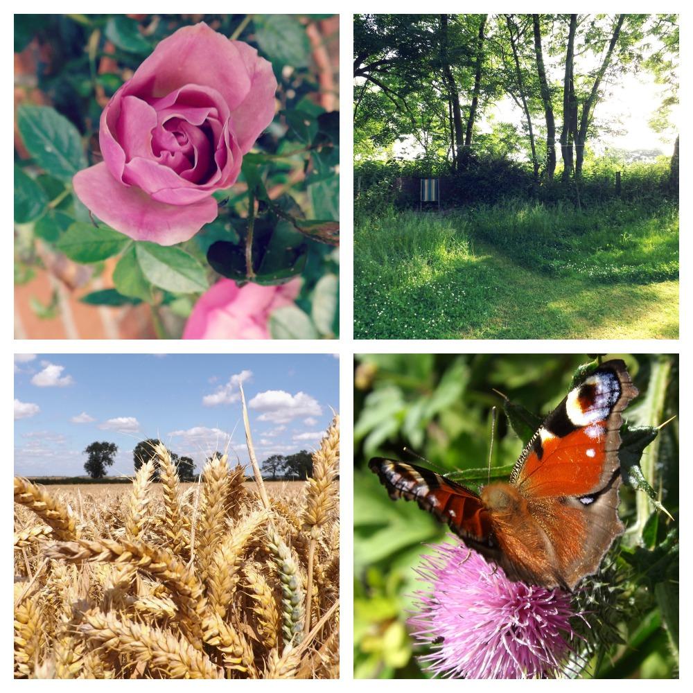 Summer-2014-Creative-Countryside