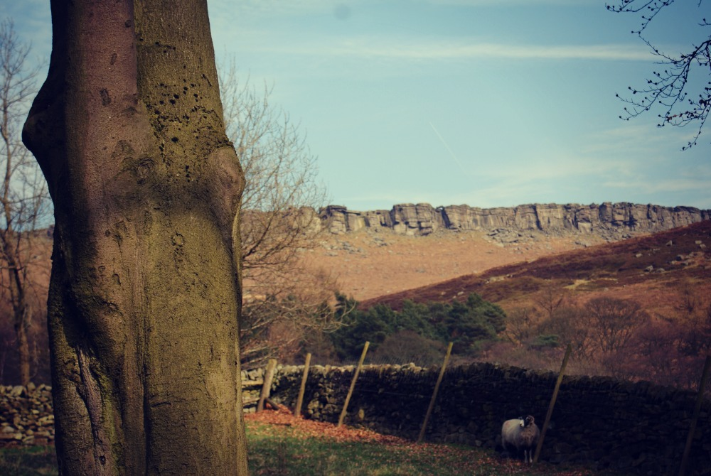 Stannage-Edge-Creative-Countryside