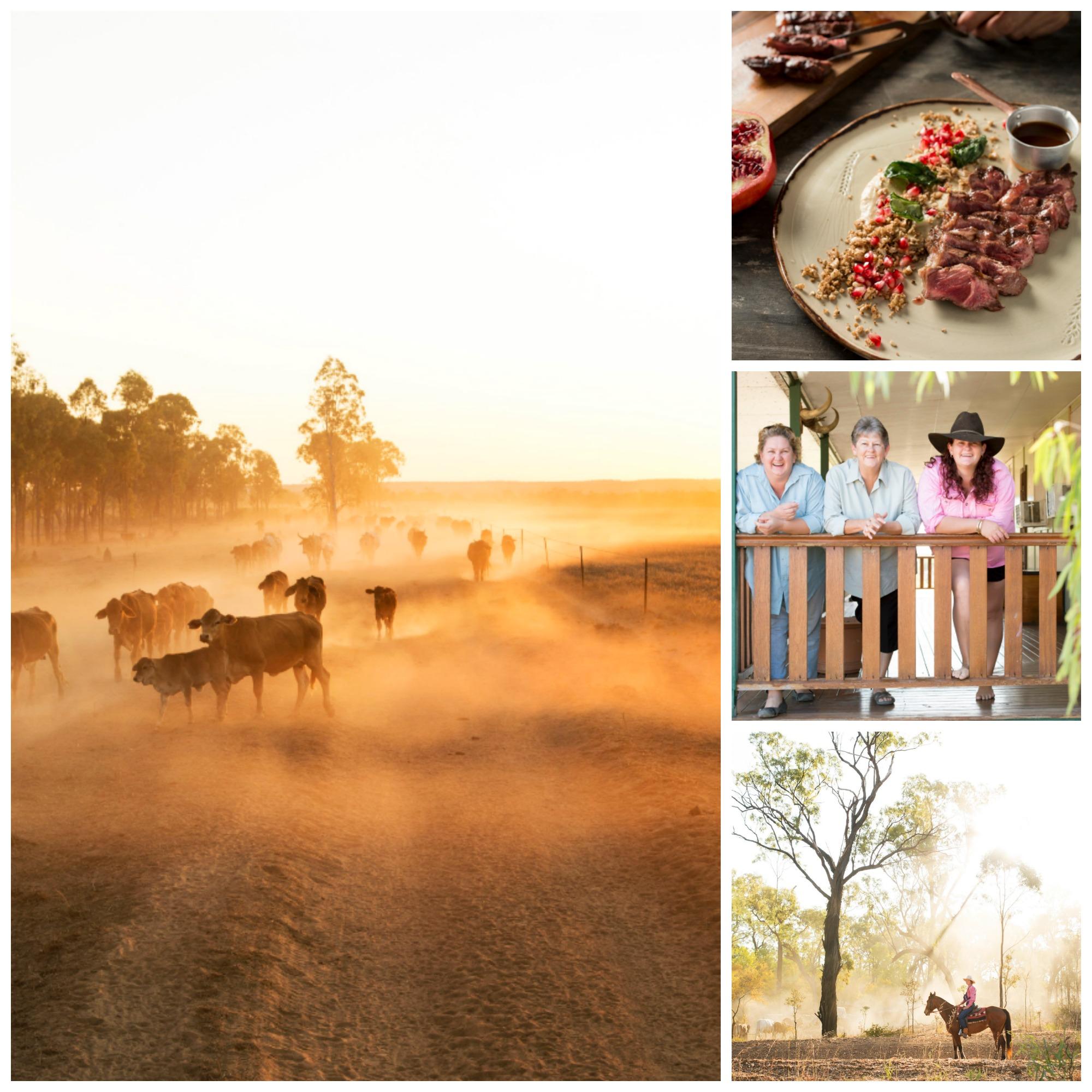 Jervoise Organic Meat