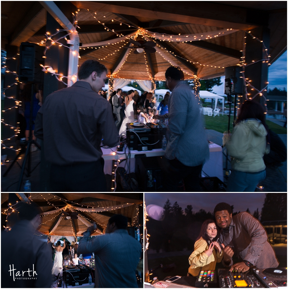 Wedding DJ - Harth Photography