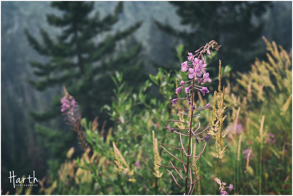 leavenworth-camping-021
