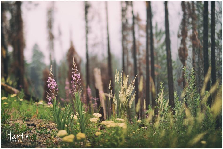 leavenworth-camping-026