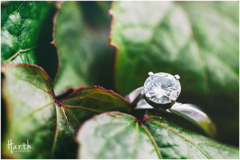 Engagement Brick | Harth Photography