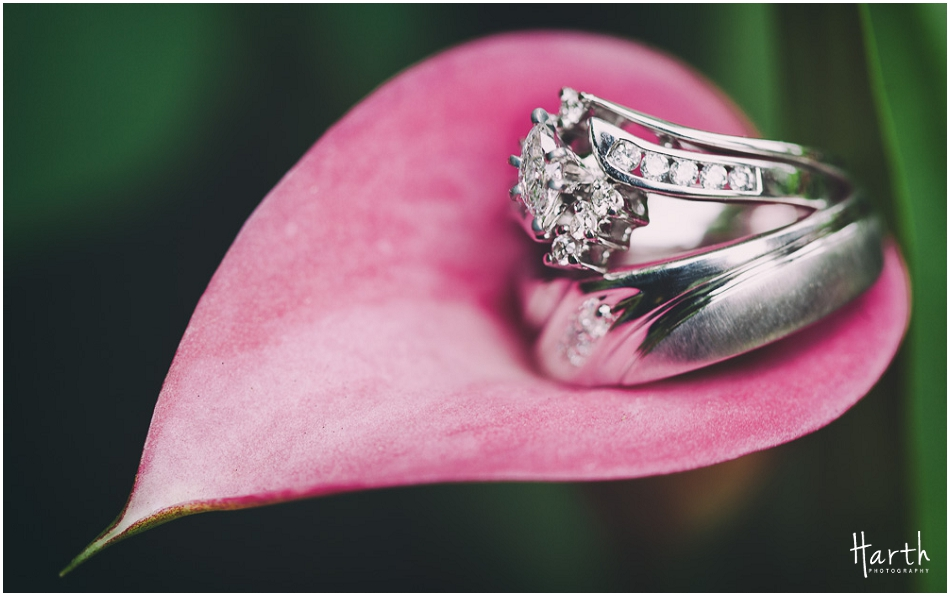 Wedding Rings in Flower Petal