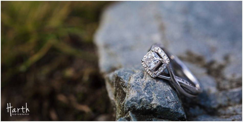 everett-fall-engagement-rings-photography