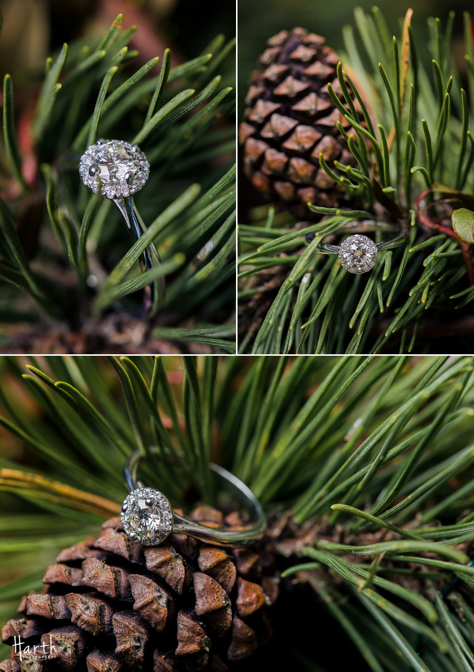 Bothell Engagement Rings