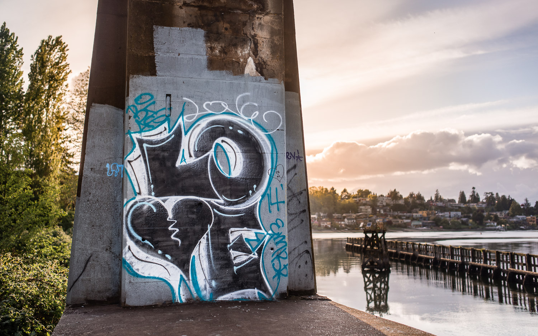 Graffiti Seattle Ballard Locks