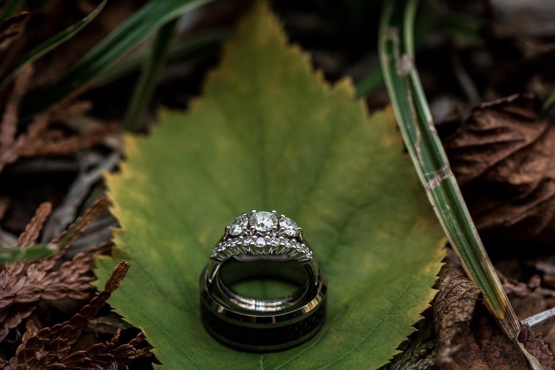 Wedding Rings in Fall Leaves