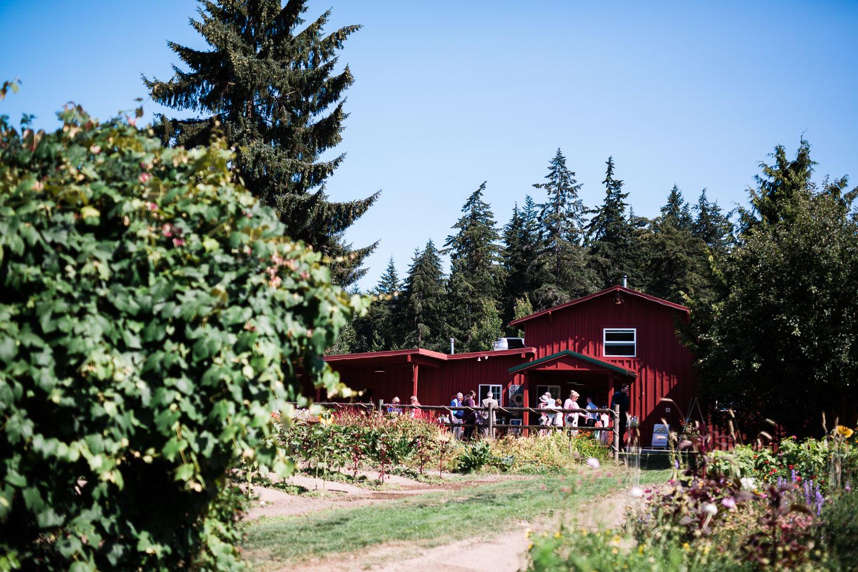 farm-kitchen-wedding-harth-photography-0246.jpg