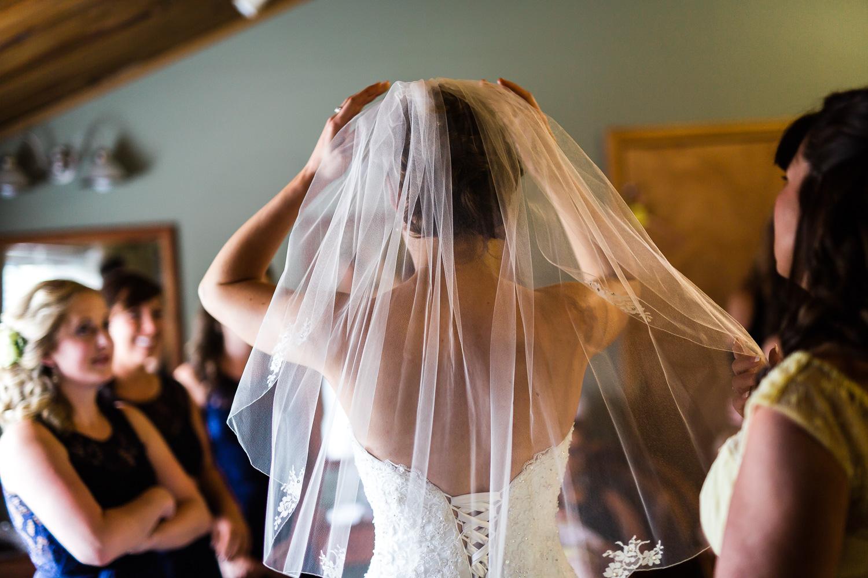 Bride's Hairpiece