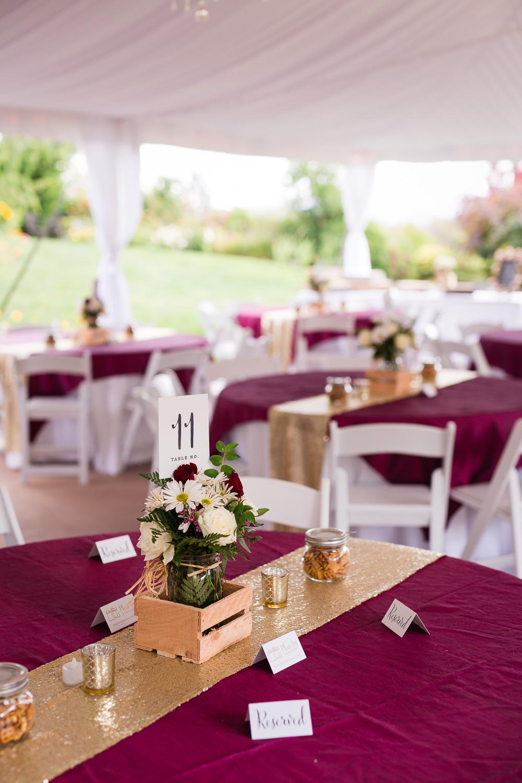 wild-rose-weddings-arlington-chris-harth-photography-352.jpg