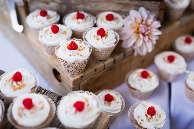 wild-rose-weddings-arlington-chris-harth-photography-658.jpg