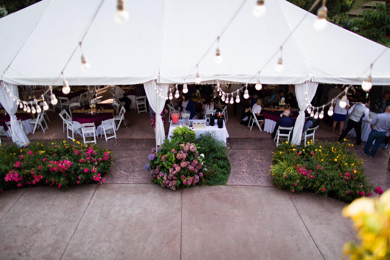 wild-rose-weddings-arlington-chris-harth-photography-741.jpg