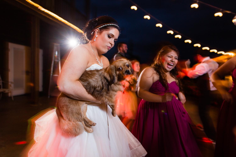 wild-rose-weddings-arlington-chris-harth-photography-903.jpg