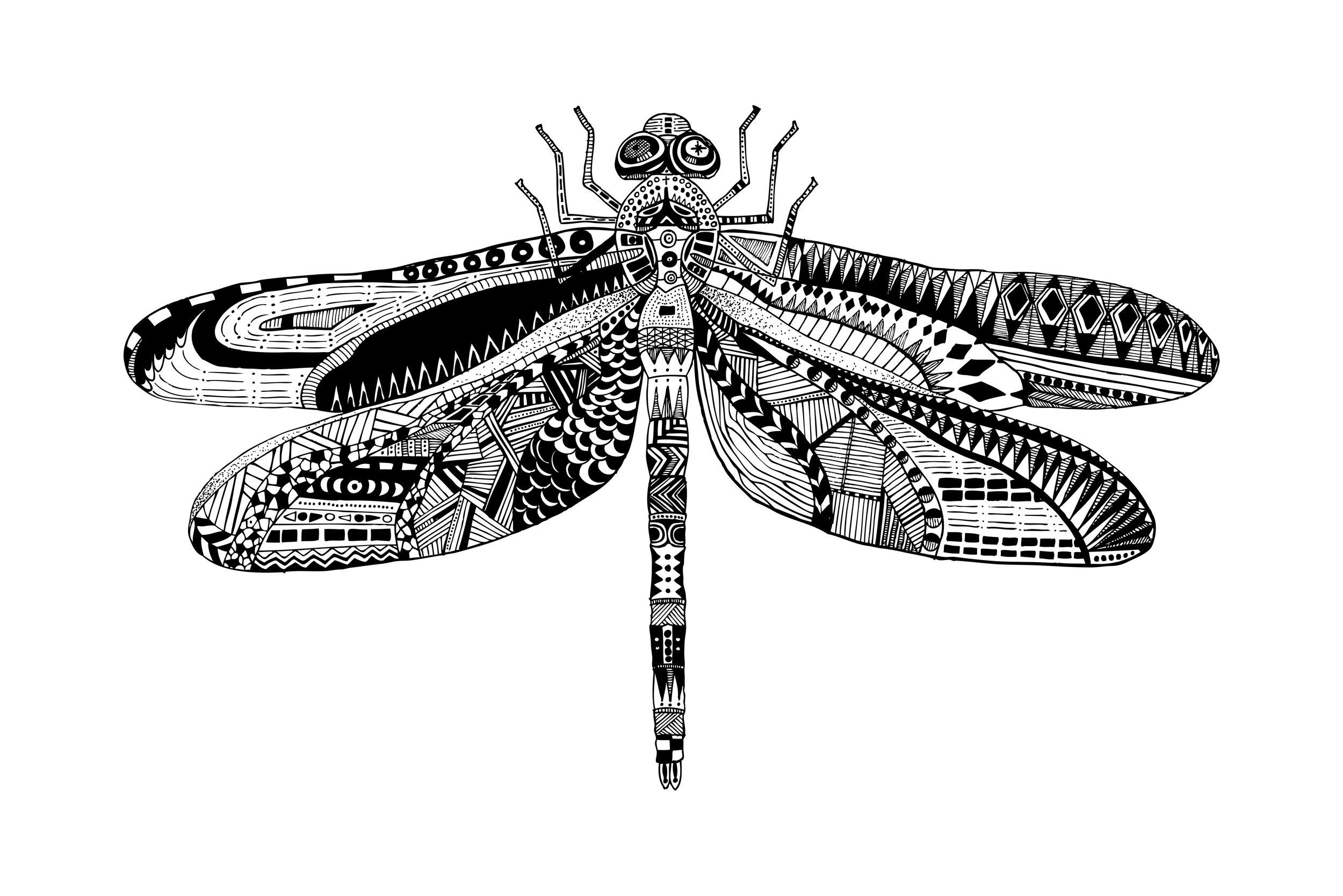 Dragonfly 3-2.jpg