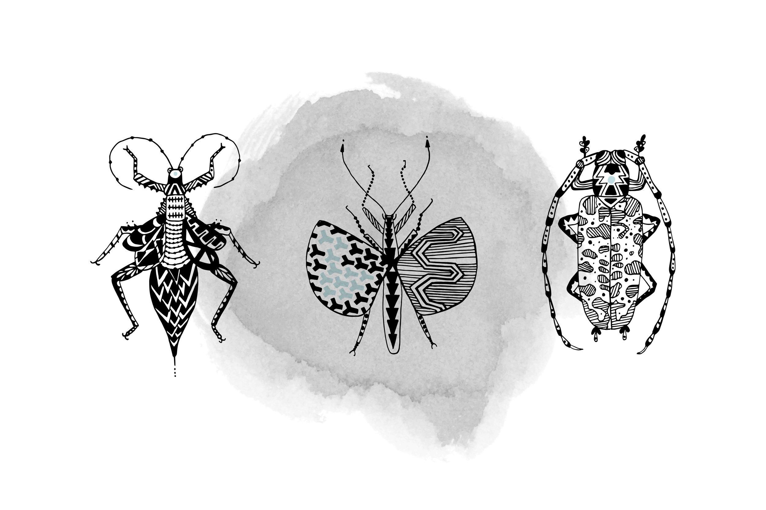 Just Beetles 3-2.jpg