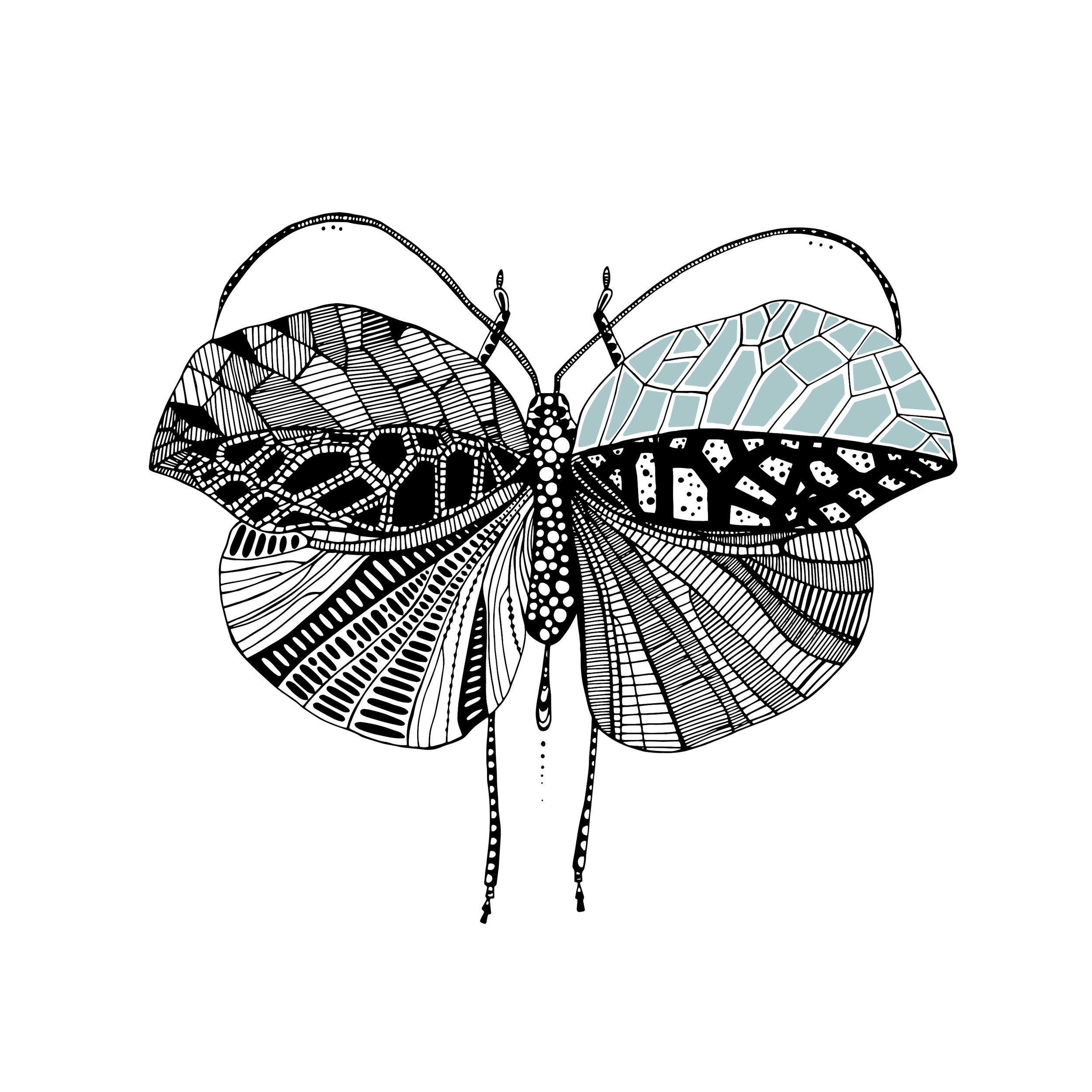 Leaf Bug 1-1.jpg