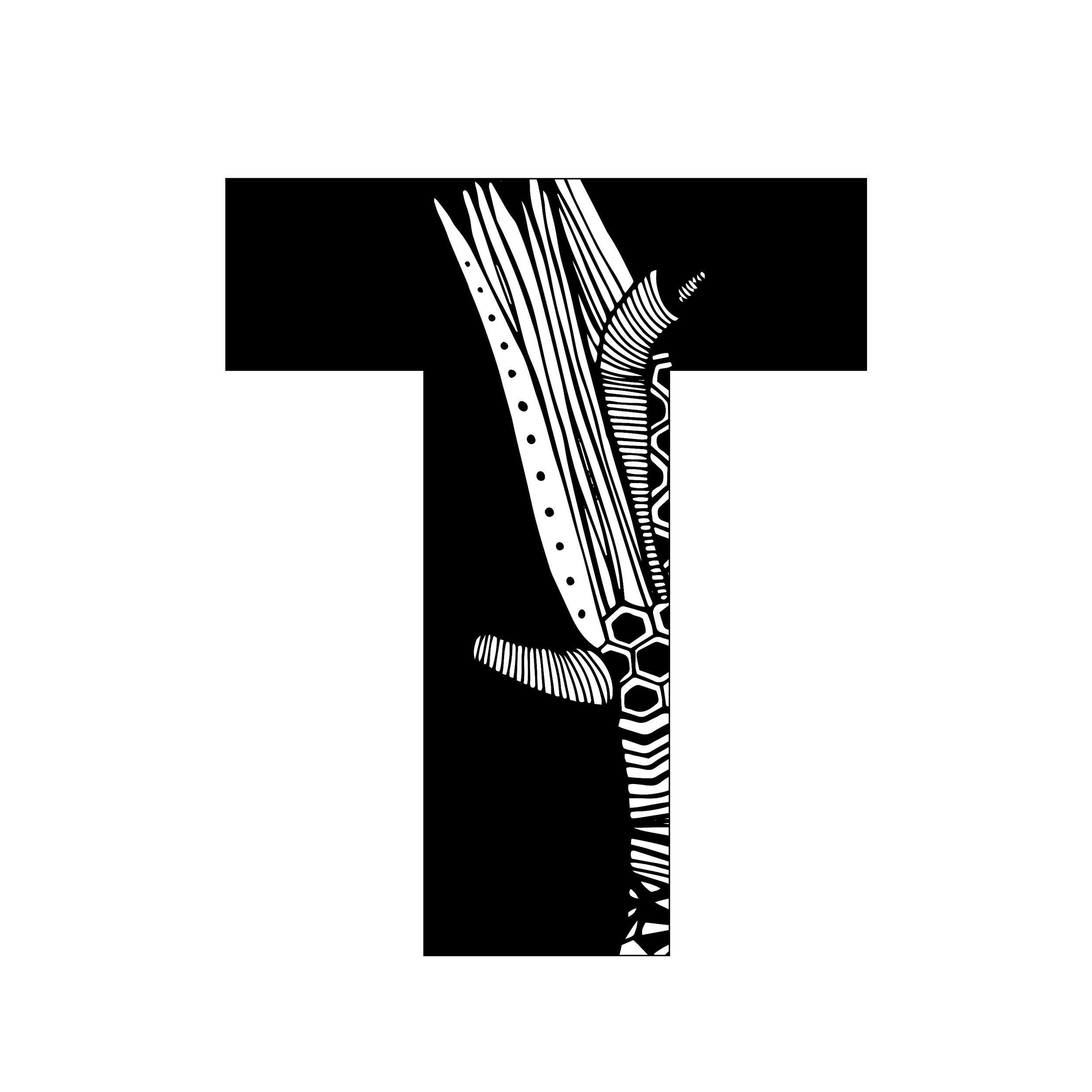 T 1-1.jpg