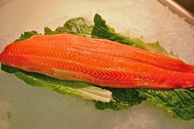 atlantic-salmon.jpg