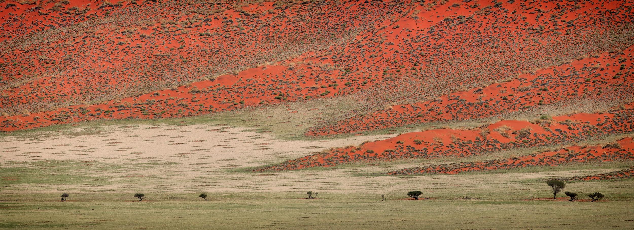 NAMIB RAND, NAMIBIA