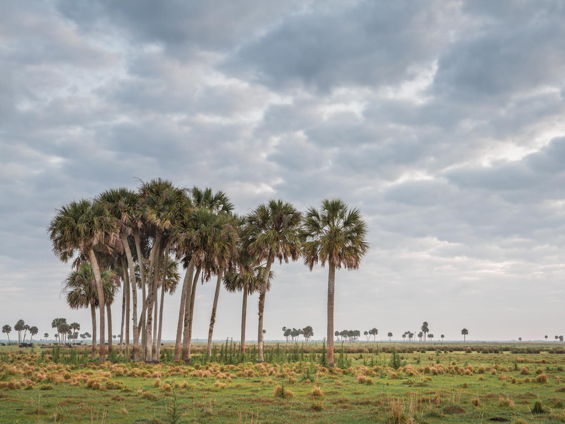 Okeechobee, Florida