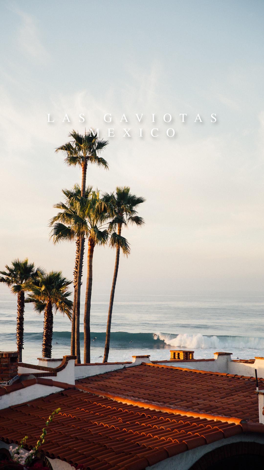 LAS GAVIOTAS.jpg