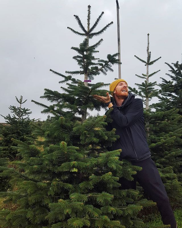 Best birthday activity ever. Getting the Christmas tree with my boo. A very tight fit in the car, an absolute perfect fit in the house, it's now up and lit, ready to be decorated at the weekend and to provide huge amount of cosy feels for our Rowden guests in a few weeks. #birthdayadvent #latenovember #stormuponstorm #stopyourbusiness