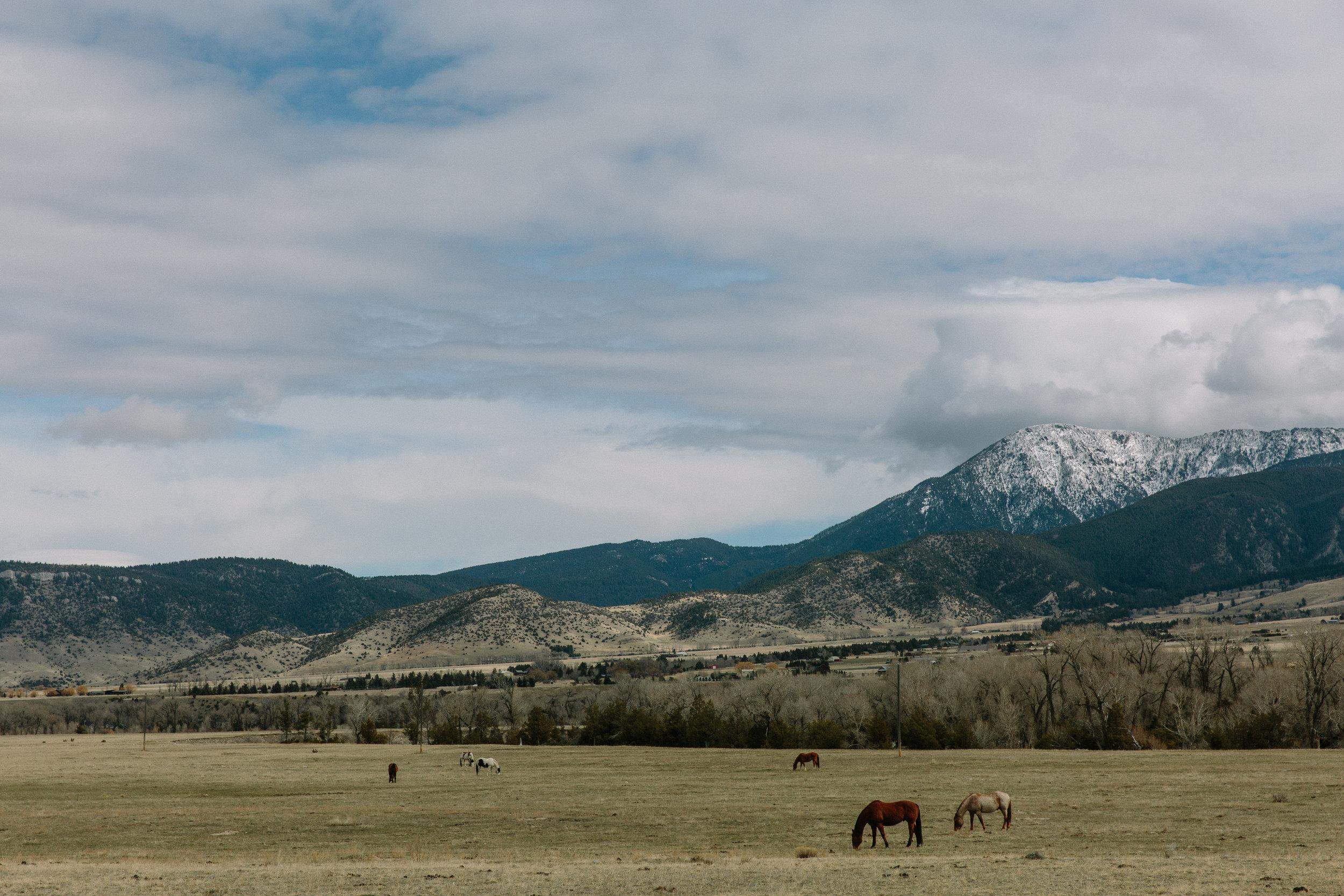 Montana_Chico_03_27_17-19-BLOG.jpg
