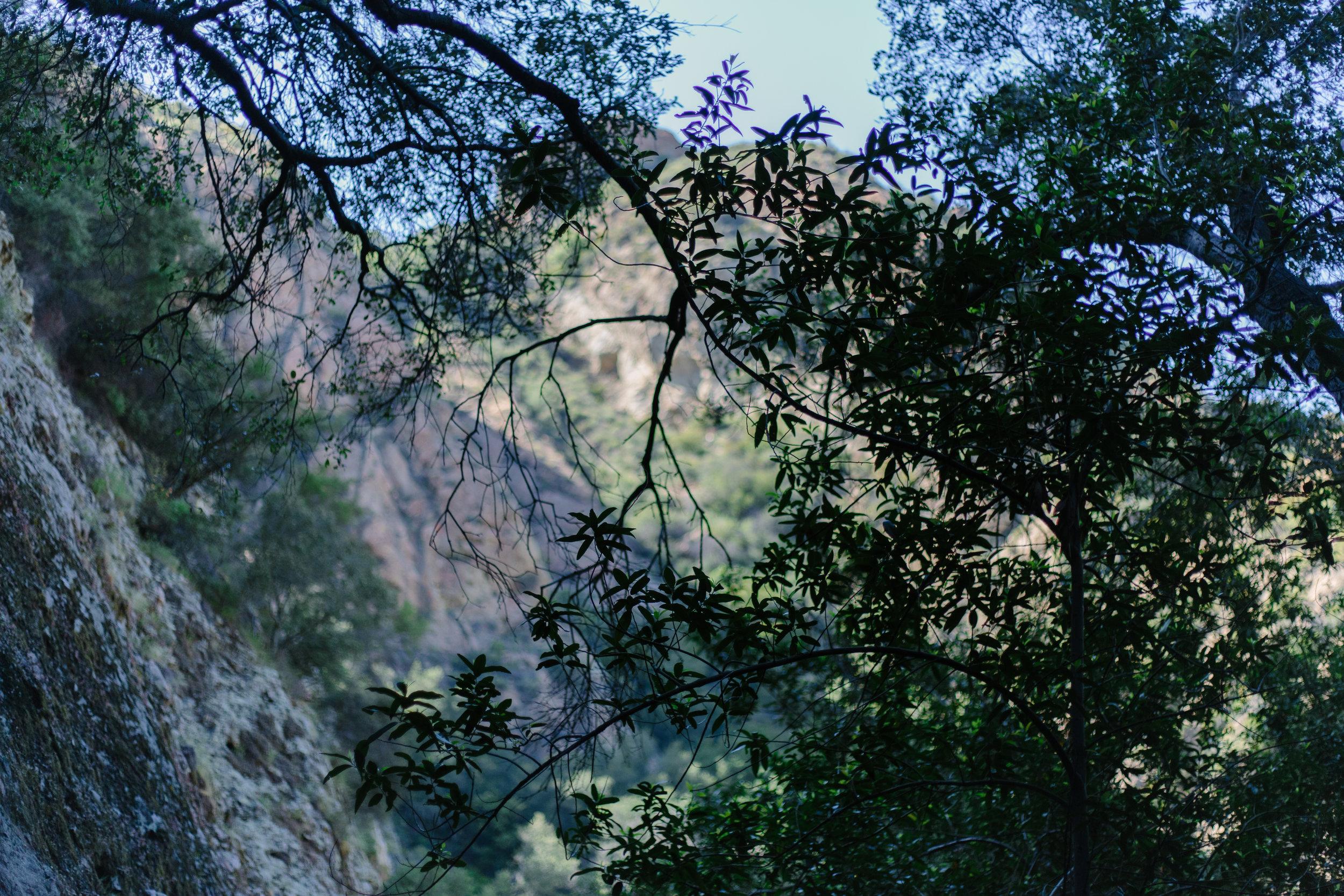 Malibu Creek Climb-25.jpg