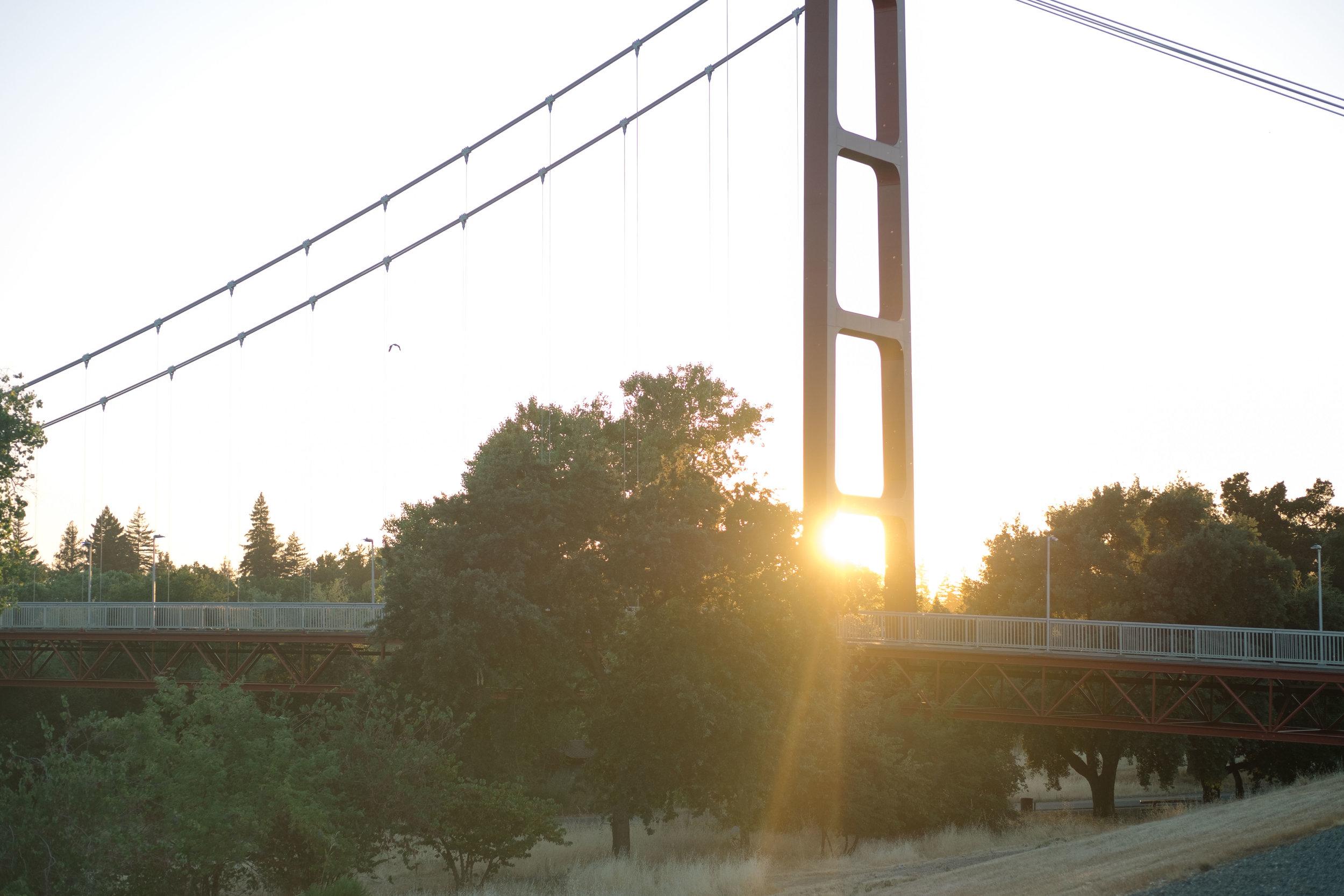 Shani_Leead_Sacramento_Point_Reyes-24-USE.jpg