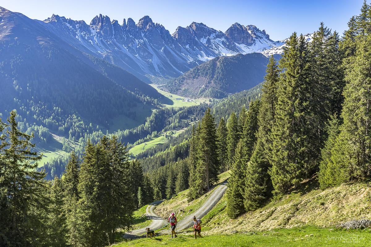 Übergang von Forstweg zu Bergpfad.