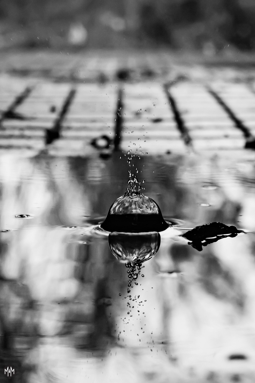 Liquid-16.jpg