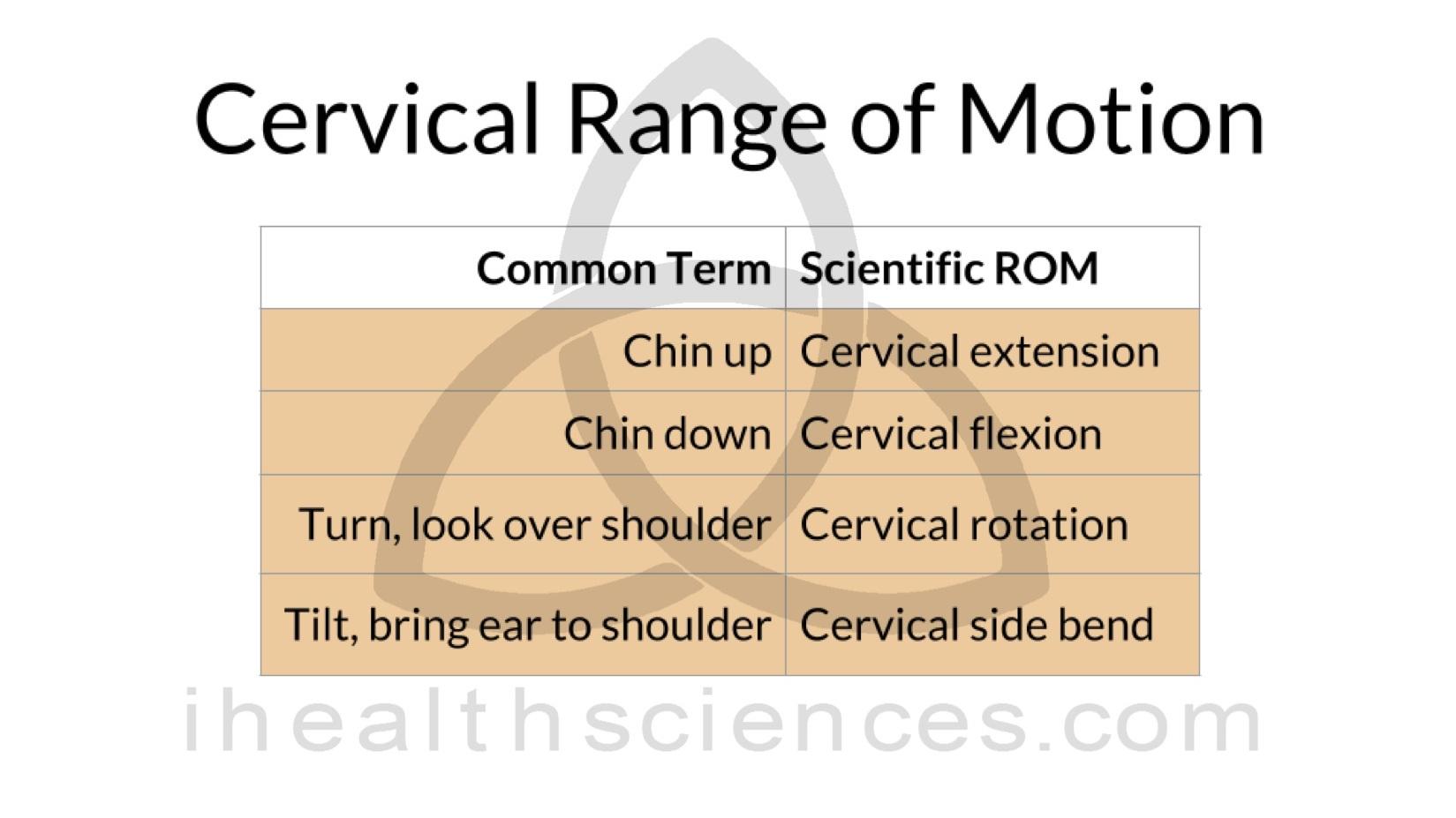ROM+1+cervical.jpg