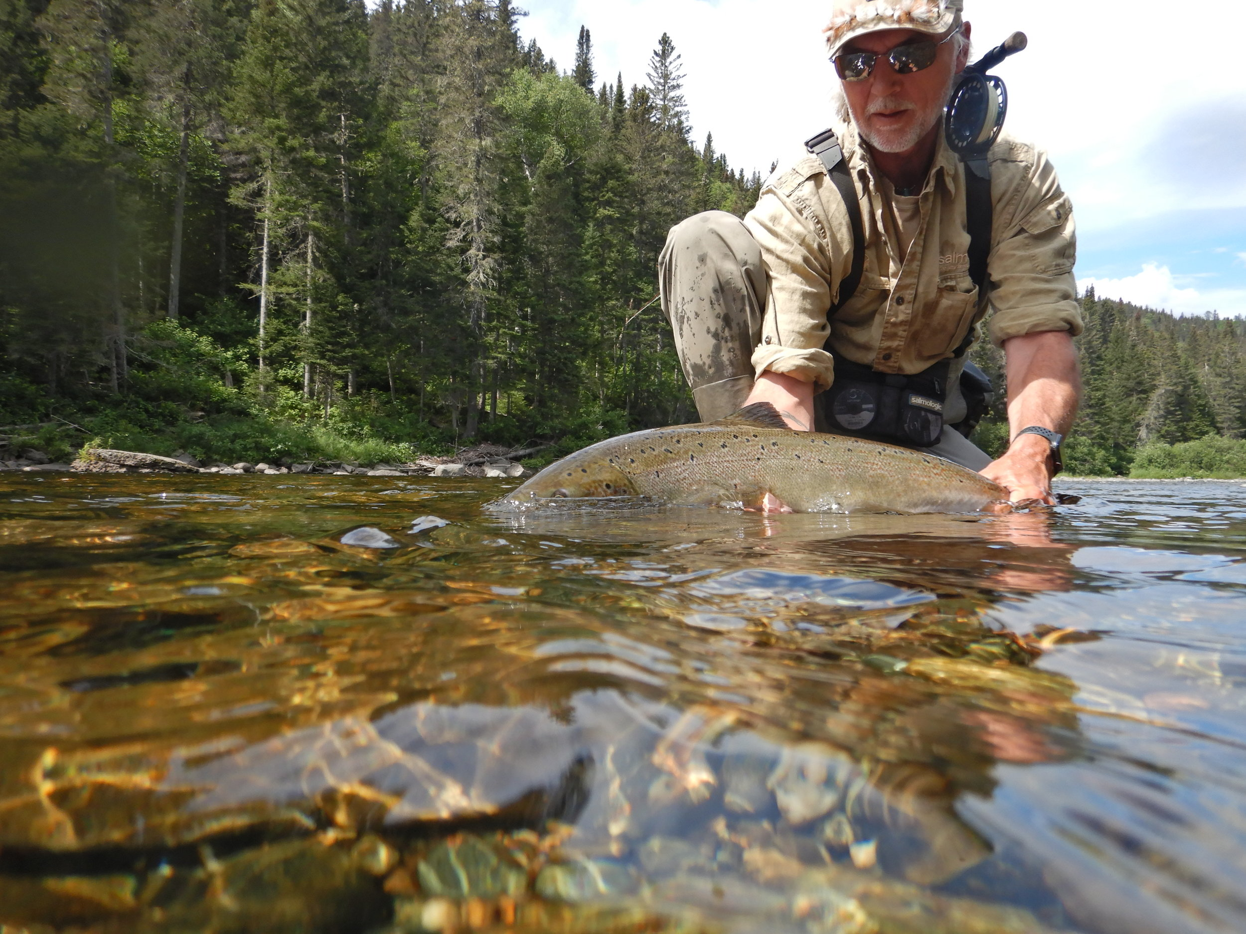 Notre très bon ami, Henrik Mortensen, est un client de Salmon Lodge depuis de nombreuses années. Il en est à sa deuxième semaine de pêche à Salmon Lodge en 2019, et quelle fantastique semaine!
