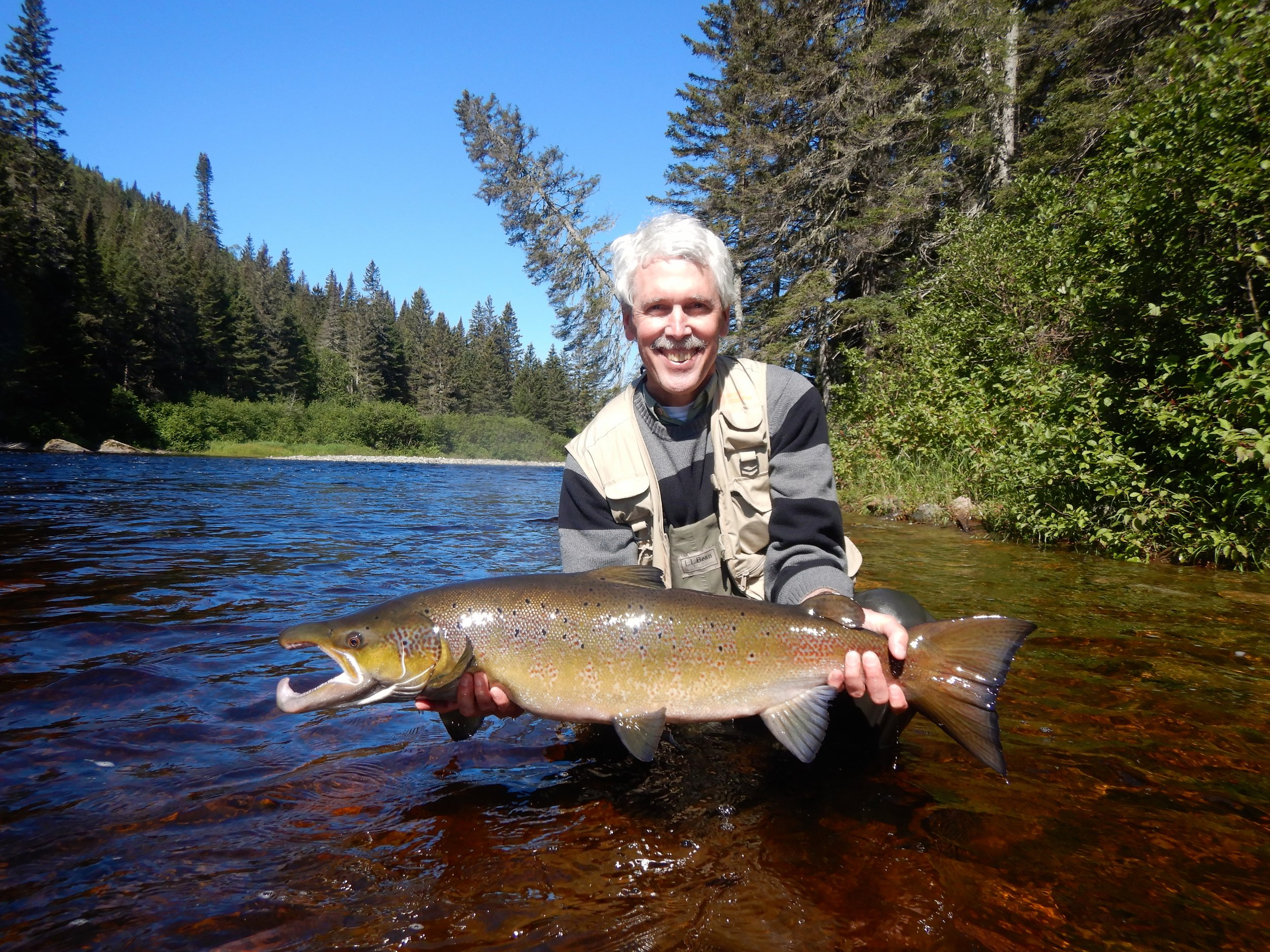Notre nouvel ami David Preston a battu son record personnel cette semaine en capturant cette belle prise dans la rivière Cascapédia! C'est la réalisation d'un beau rêve! Nous sommes heureux d'y avoir participé!