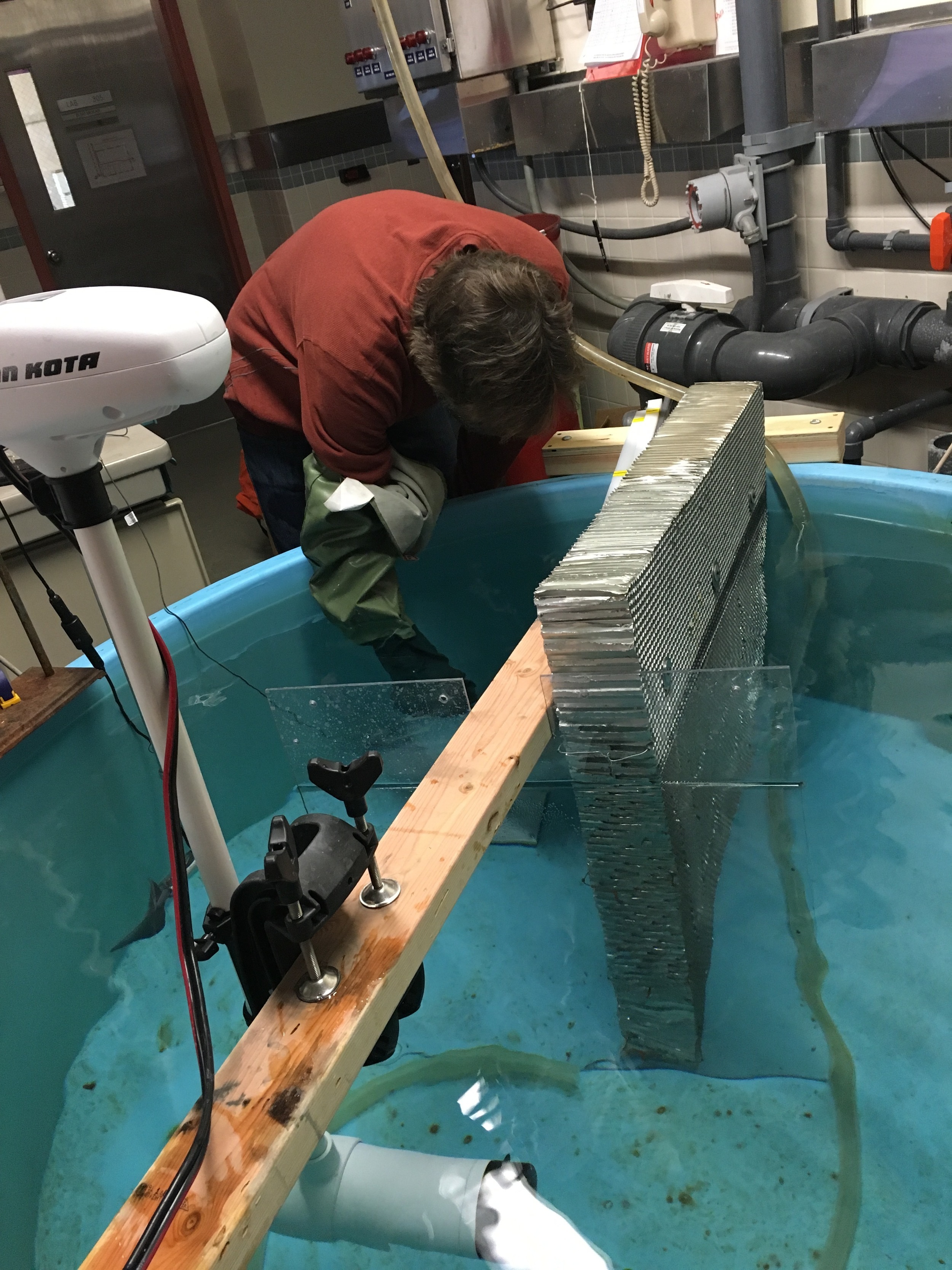 Bret testing a sea spider's ability to hang on in flow in a large circular tank that's been modified to work as a flume.